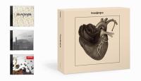 Земфира. Земфира (3 CD Box) (Подарочное издание) - Земфира Рамазанова (Zемфира)