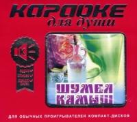 Karaoke dlya dushi. SHumel kamysh