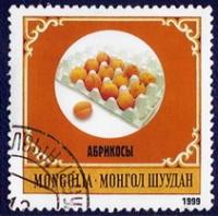 Монгол Шуудан. Абрикосы - Монгол Шуудан