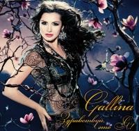Gallina. Здравствуй, это я! - Gallina