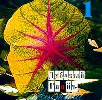Мистика, Vol  1 - Дубовый Гаайъ